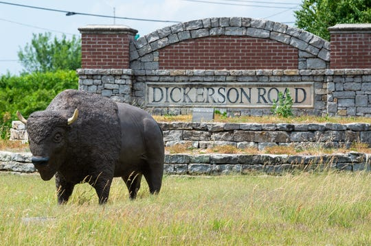 A buffalo sits in front of the Dickerson Pike sign Wednesday, June 5, 2019, in Nashville, Tenn.