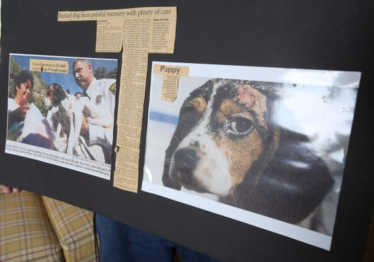 News clippings that the Martins collected over time telling Champ's story. Over ten years ago Mike and Janice Martin, formerly of Fair Lawn, rescued a beagle that was tortured by being burned with acid in Paterson. The dog, Champ recovered due to the dedication from the Martins to nurse him back to health. Champ became a therapy dog giving comfort to people in hospitals, nursing homes and anywhere they needed to to feel better. Champ died last week and the Martins mourn his passing.