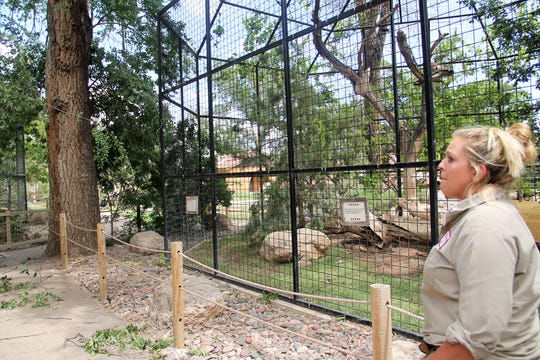 Alameda Park Zookeeper Kate Unterweger looks at some of the zoo's damage from Tuesday's severe weather event.