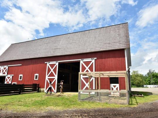 The Maybury Farm's main barn. The barn hosts rabbits, pigs, goats, sheep and peafowl.