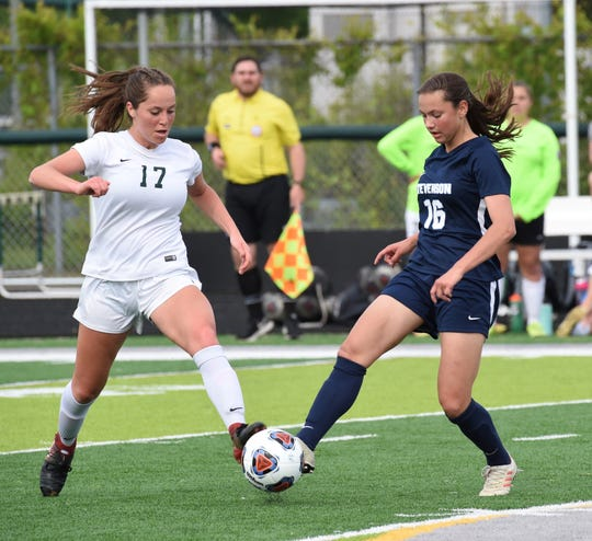 Novi's Michelle Jecmen and Stevenson's Abby Werthman both go for the ball in the regional semifinal.