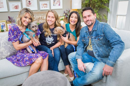 "Two of the saved Coachella dogs sit with Hallmark Channel ""Home & Family"" pet rescue expert Larissa Wohl, second from right, with show hostess Debbie Matenopoulous, left, and Paw Works co-founders Brittany Vizcarra and Chad Atkins. The two dogs were among 38 seized in April from the Coachella home of a woman suspected of dumping days-old puppies in a trash bin. The two shaggy mixed terriers, both males, are ready for adoption and will be showcased on ""Home & Family"" on Thursday, June 6, 2019."