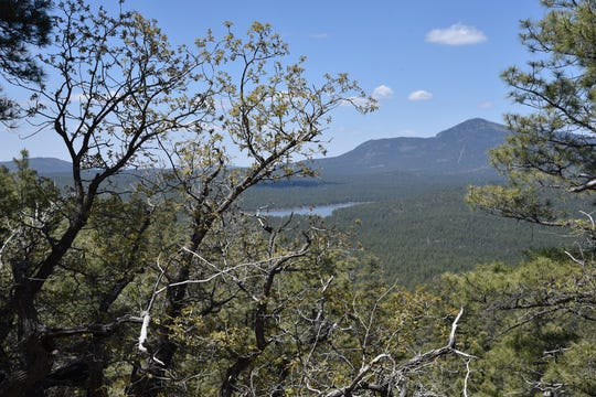 Dogtown Lake and Bill Williams Mountain seen from the Davenport Hill Trail near Williams.