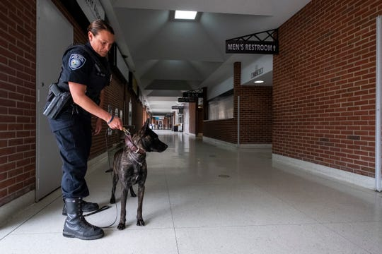 'Just Doing Jade Things': Police Dog Newly Certified To