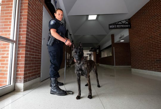 Port Huron Police Officer Jennifer Sly prepares Jade for a training exercise Wednesday, June 5, 2019 at McMorran Arena. Jade, a 14-month-old Dutch Shepard, is the department's explosive sniffing dog.