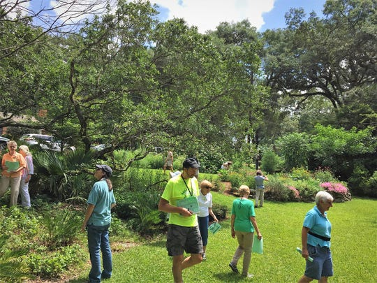 Florida Native Plant Society members examine the large mulched and planted beds that slow down the flow of rainwater in Legare's front yard.
