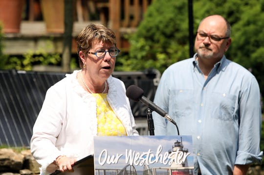 County Director of Operations Joan McDonald discusses a new study of noise from airplanes as homeowner Jeffrey Kuduk looks on June 5, 2019 in Chappaqua.
