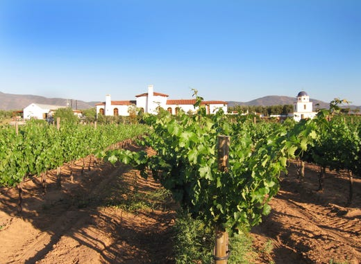 Mexico S Valle De Guadalupe Is A Must For Wine Lovers