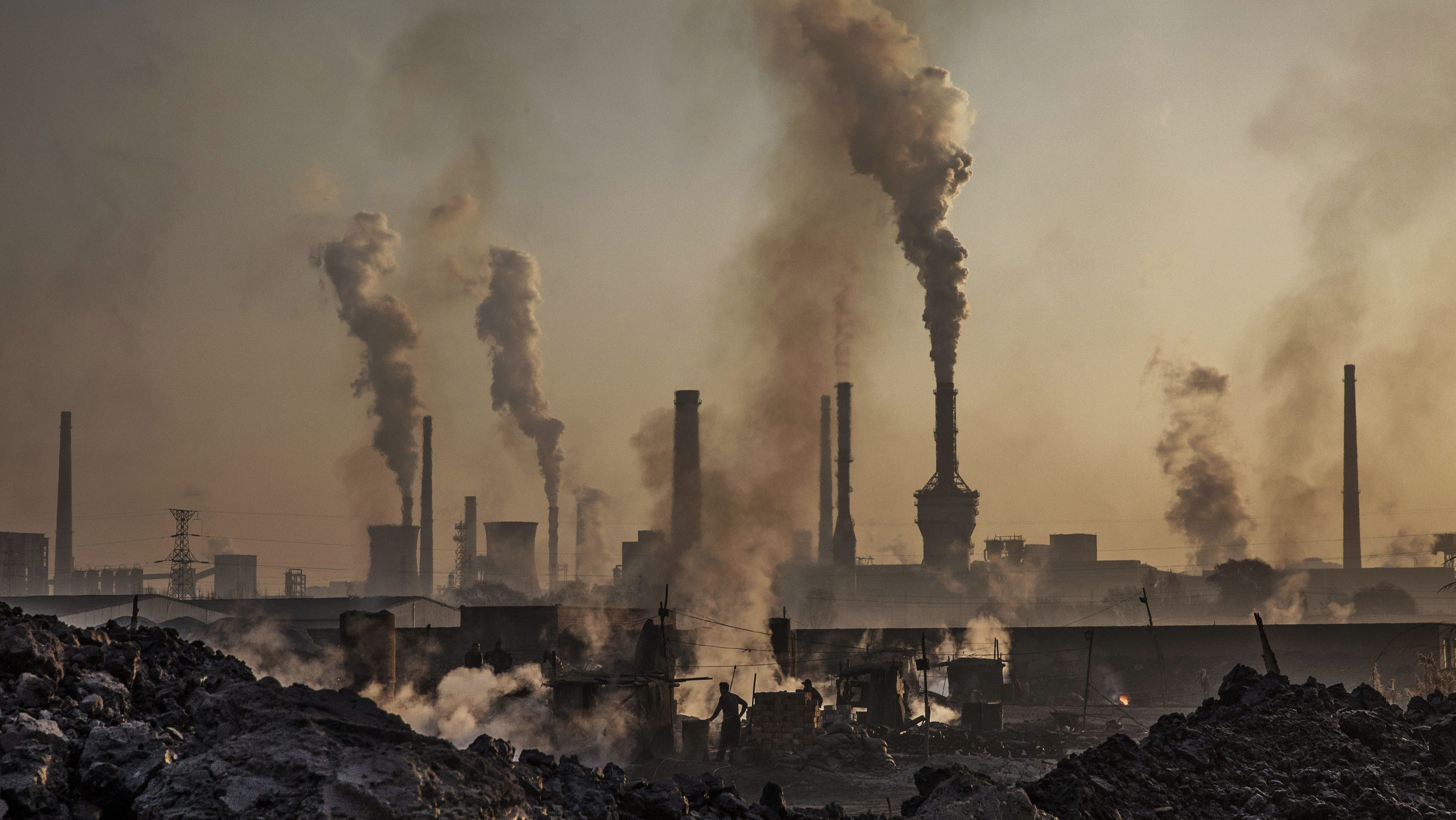 Highest in more than 4 million years: Earth's carbon dioxide levels soar to record high despite pandemic