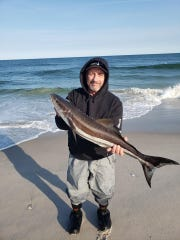 Bob Misak with a cobia he landed in the surf on the north end of Long Beach Island, June 4.