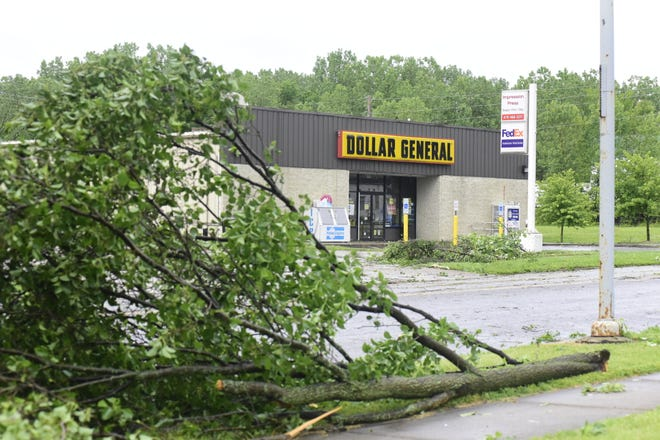 Dozens of trees were knocked down by an EF0 tornado in Galion late Wednesday afternoon.