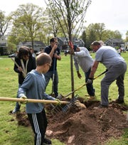 A tree planting project was completed on Tuesday, June 4, on the grounds of Jefferson School in Westfield.
