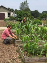 KBGA intern Spencer Shelton and volunteer Susan Kiss do some weeding in the raised bed garden area. June 5, 2019.