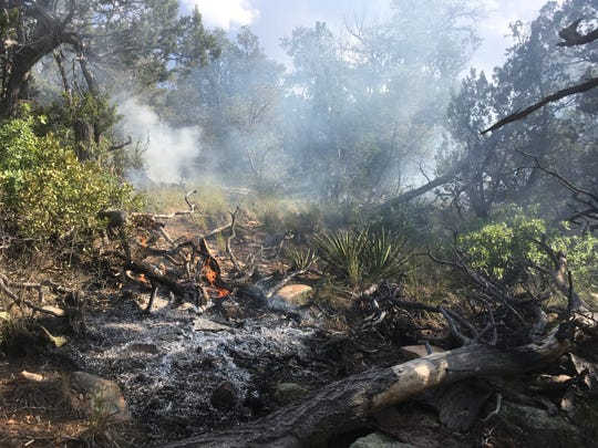 A burned area within the Lone Mountain Fire shows the type of vegetation being consumed.