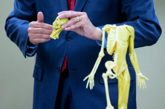 Research for Life CEO Garland Shreves uses a plastic human skeleton to explain to prospective donors how the body donation company might dissect or dismember their bodies.