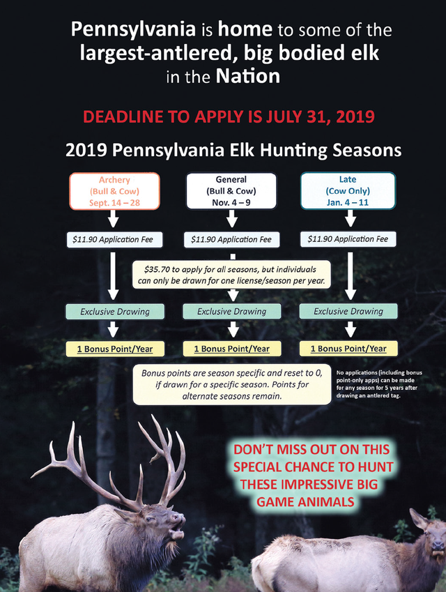 Six notable changes in the 2019-2020 Pa  Hunting and