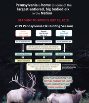 A flow chart explaining the application process to elk licenses.