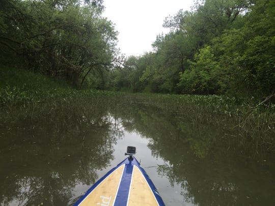 Gilbert River at Sauvie Island is a great place to flat water paddle.