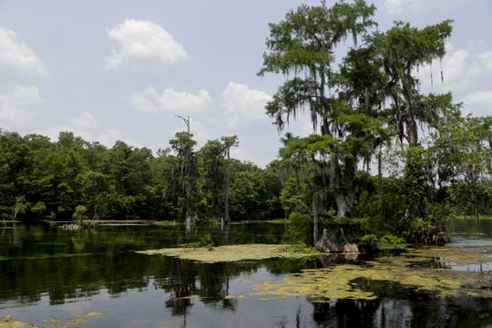 The Wakulla Springs State Park will host the Wakulla River Heritage Carnival on Saturday.