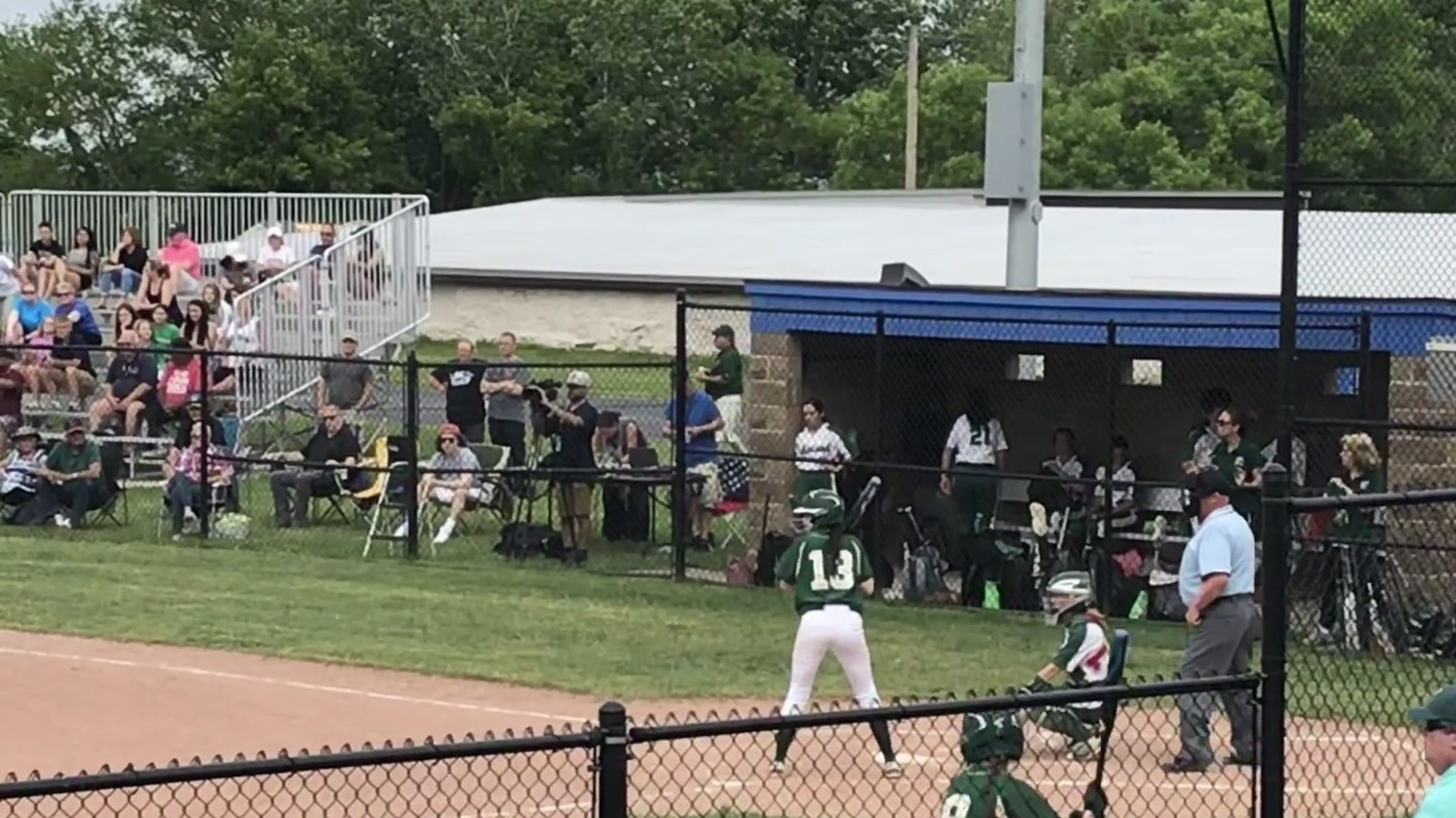 Vestal softball falls to Minisink Valley in Class A state playoffs