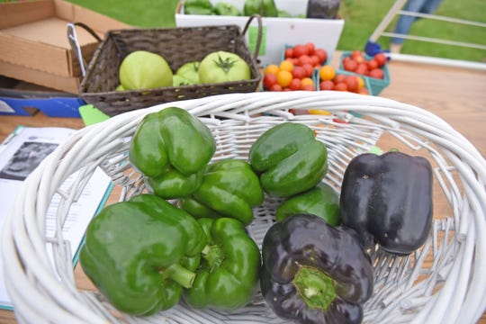 Produce is abundant but not the only thing available at the Dutchtown Farmers Market.