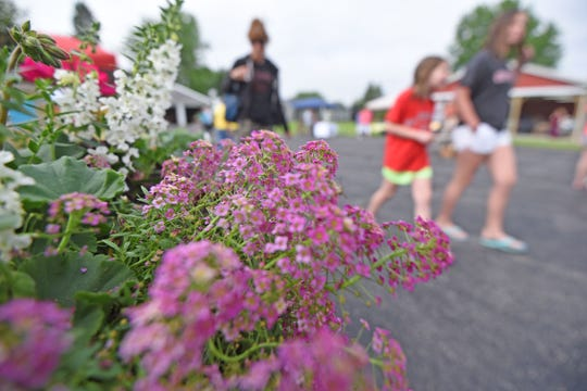 Flowers help bring color to the Dutchtown Farmers Market on Thursday in New Washington.