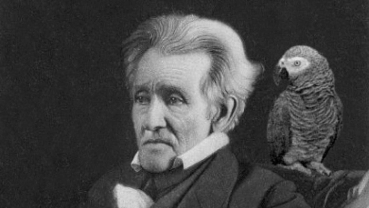 Today in History, June 10, 1845: Andrew Jackson's parrot removed from his funeral for swearing