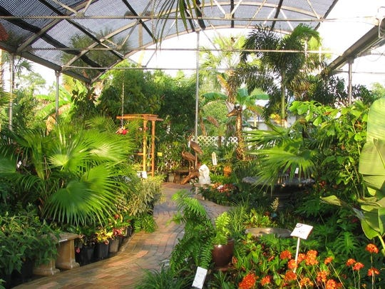 Williams Magical Garden Center & Landscape has been serving the homes of South Florida for more than 50 years.