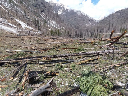 The West Fork Trail in the San Juan National Forest in southwest Colorado is covered in avalanche debris on June 6.