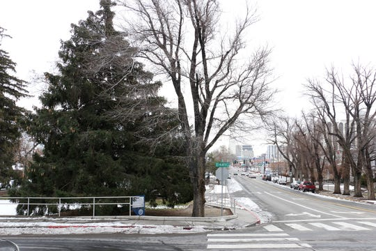 The Grand Army of the Republic Tree is seen at the intersection of Ninth and Center St. in Reno on Jan. 8, 2019.
