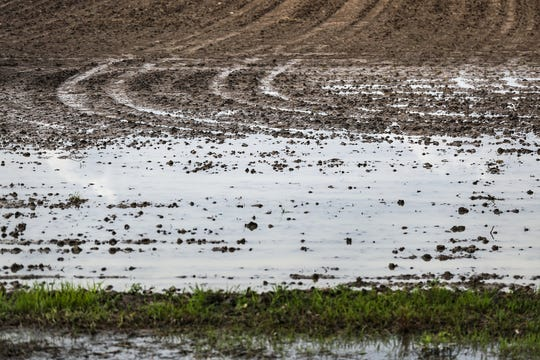 Rainwater pools in a Hancock County field in Indiana, Thursday, June 6, 2019. More than 5.5 million acres of Indiana farmland were scheduled to be planted with corn this year, but as of June 2, only 31 percent has been planted due to wet spring weather.