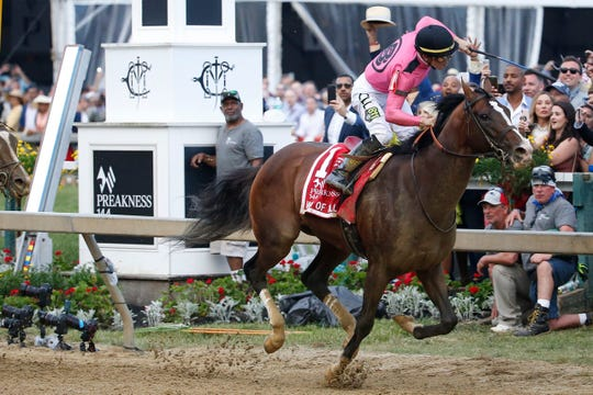 War of Will, shown winning the Preakness, is a candidate for leading 3-year-old right now.