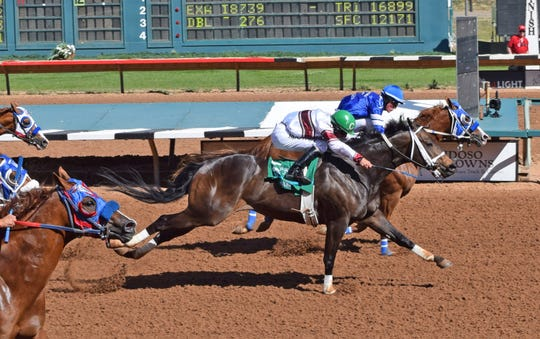 Apocalyptical Jess won the Ruidoso Derby last month in Ruidoso and will compete in the Rainbow Derby trials on Sunday.