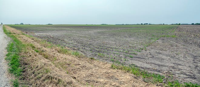 This June 3, 2019 photo shows a farm field southwest of Bondville, Ill., owned by Augusta Farms, a company based in Brazil. Foreign investors acquired at least 1.6 million acres of U.S. agricultural land in 2016, the largest increase in more than a decade by the latest available federal data. The data from the U.S. Department of Agriculture show that foreign investors control – either through direct ownership or long-term leases – at least 28.3 million acres, valued at $52.2 billion. That area is about the size of the state of Ohio.