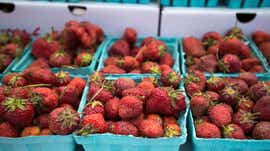 Owego Strawberry Festival canceled for second year