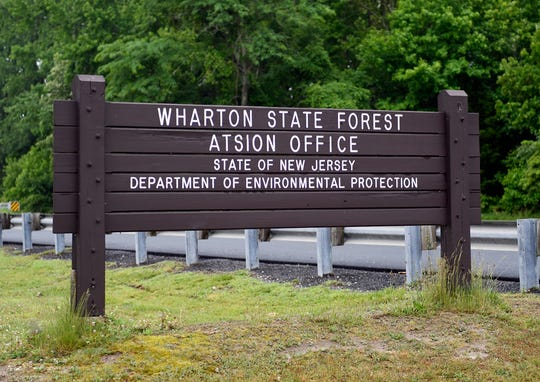 Head to Wharton State Forest for a First Day Hike.