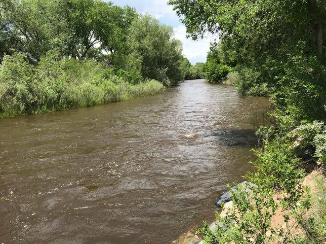 The Poudre River was rising with spring runoff near Shields Street in Fort Collins on June 7, 2019 but was well below flood stage.