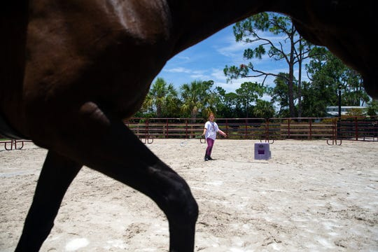 Summer camp attendee Giada DiSarro, 9, works with Jackson, an 18-year old thoroughbred, with his ground work, Monday, June 10, 2019, during a summer camp hosted by Track to Trail Thoroughbredsat the Pine Ridge Equestrian OTTB Training Facility and Education Center in North Naples.