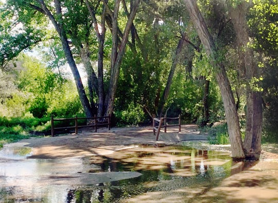 This northside Berg park trail ends in water due to rising Animas River levels.