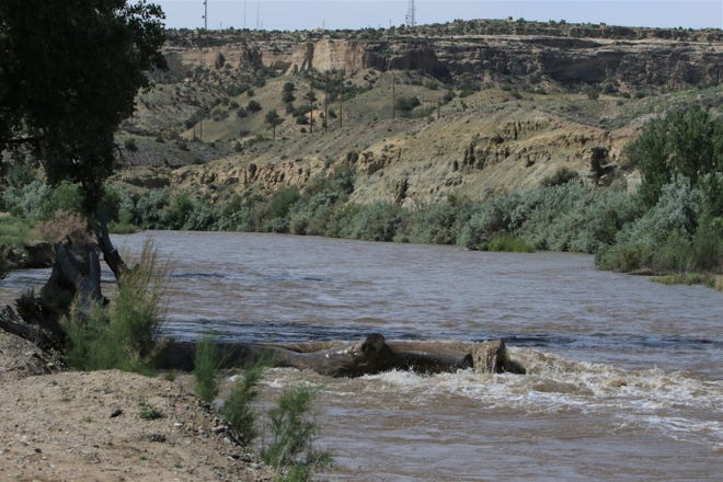 The San Juan River below the confluence with the Animas River is pictured, Monday, June 10, 2019, in Among the Waters Park in Farmington.