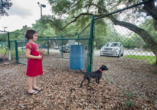 Giovanna Capocci, 6, of Pensacola and her dog, Clove, look out from the dog park near the Vickrey Resource Center in Pensacola on Monday. The Pensacola City Council will be voting Thursday on a land swap deal with the YMCA of Northwest Florida to trade the property between the Vickery Resource Center and the Roger Scott Tennis Center courts for the current YMCA on Langley Avenue. If approved, the YMCA will build a new facility near the Vickrey Resource Center and the city will build soccer fields at the Langley Avenue location.