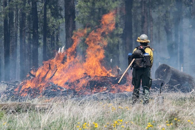 A firefighter watches the blaze of the Coldwater Fire in the Coconino National Forest.
