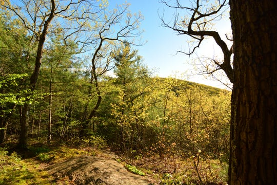An unmarked viewpoint offers a peek along the trail to Sharon Mountain.