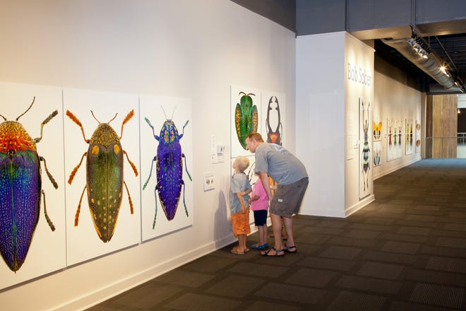 ArtZeum at the Kemp Center for the Arts promises a colorful and informative good time for children and their parents to learn about insects. The exhibit is spread across the Kemp and runs through August 11. The Kemp is open daily from 9 a.m. to 5 p.m. Monday through Friday, 10 a.m. to 4 p.m. Saturday and 12:30 to 4 p.m. Sunday.