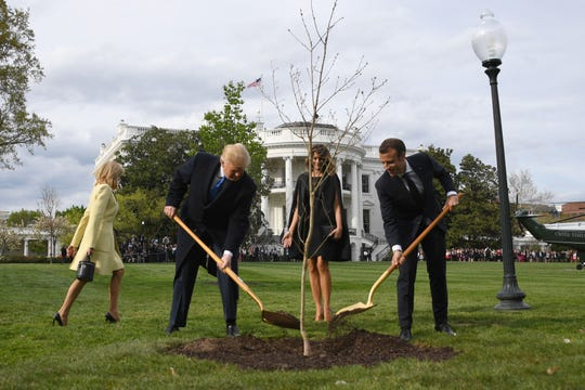 President Donald Trump and first lady Melania Trump participate in a tree planting ceremony with French President Emmanuel Macron and his wife, Brigitte.