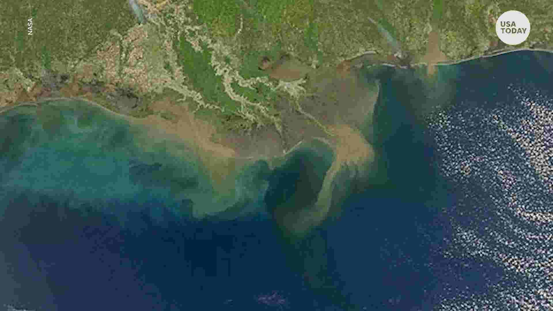Map Of America Gulf Coast.Gulf Of Mexico Dead Zone To Be Second Largest On Record This Summer