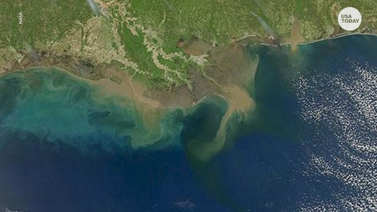 Gulf of Mexico 'dead zone' was projected to be the second-largest on record this summer.