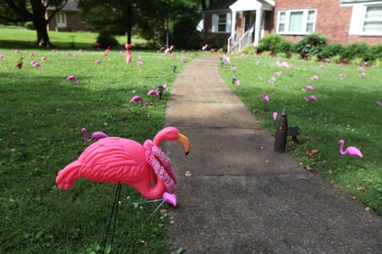 Dr. Frank Willard's neighbors placed 102 flamingos and a giant handmade card on his yard to wish him a happy 102nd birthday, June 11, 2019.