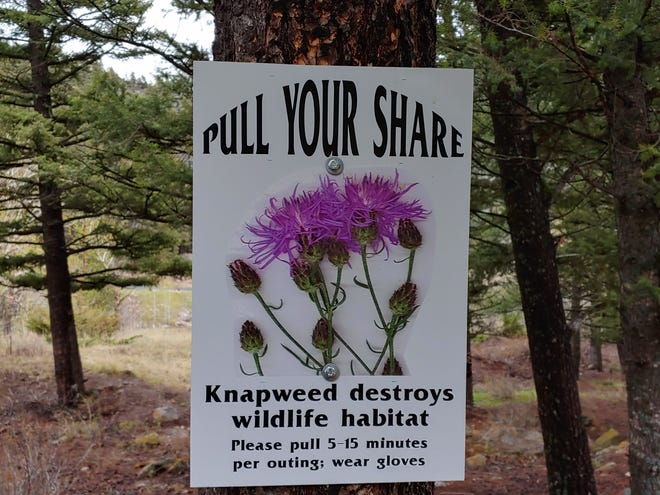 The signs are posted at trailheads, along trails, boat ramps and more