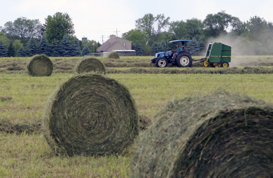Alfalfa harvest started across the state with thin stands in some areas. Farmers in Waukesha County make first crop hay on June 11.
